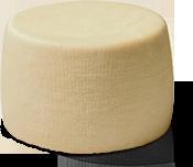 queso-tierno-de-cabra